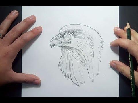 Como Dibujar Un Aguila A Lapiz How To Draw An Eagle In Pencil