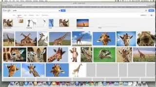 how to resize an image mac