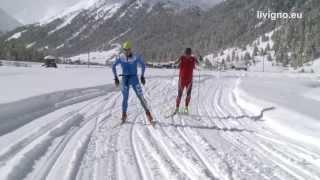 55 centimetri di neve fresca e temperature sotto alla zero hanno permesso aprire parte della pista fondo dove le squadre nazionali del nord europa si s...