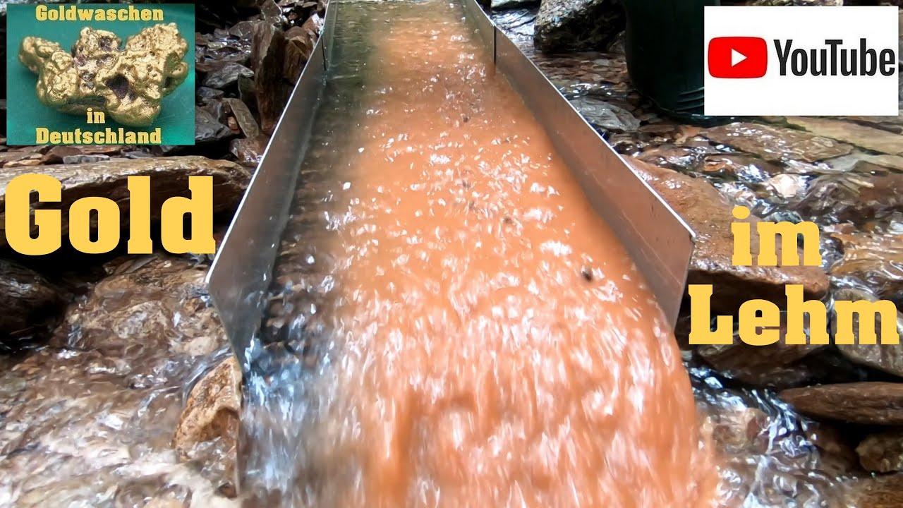 Goldwaschen in Deutschland ( 139 ) Gold steckt im Lehm