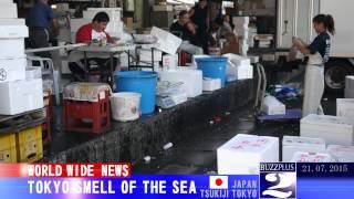 015年7月20日夜、東京をメインとした日本各地から「海の匂いがする」と...