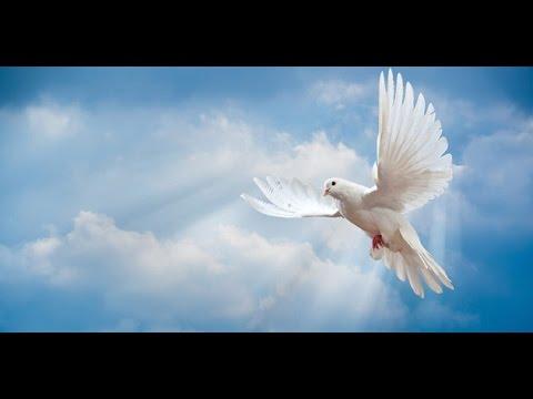 SHALOM ALEICHEM wonderful song for peace - lyrics and translation - Susana Allen