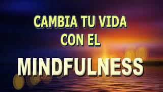 MINDFULNESS PARA EL ESTRÉS Y LA ANSIEDAD.  HÁBITOS DE VIDA Y MEDITACIÓN