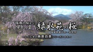 福島の花めぐりより ~四季の里 緑水苑の桜~