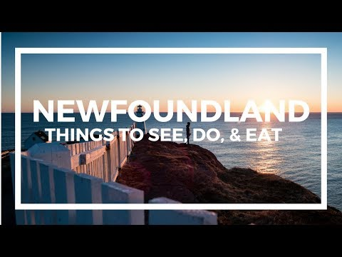 Newfoundland Travel Guide - Top Things To See, Do, & Eat