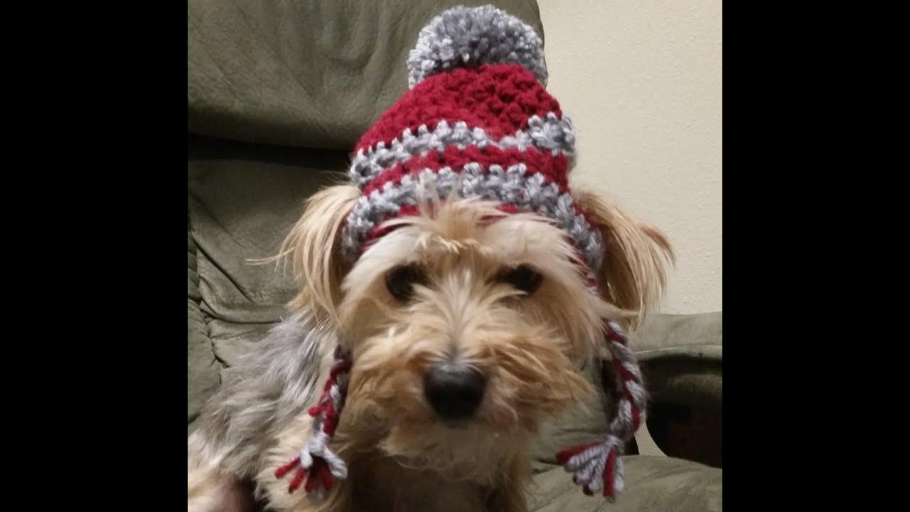 74c776526d1 Crochet Hat for Dogs Tutorial - YouTube