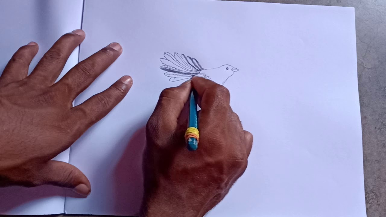 Drawing from normal pencil - YouTube