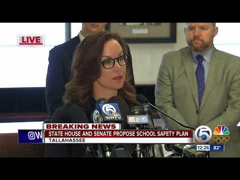 Florida House, Senate outline plan for school safety (30 minutes)