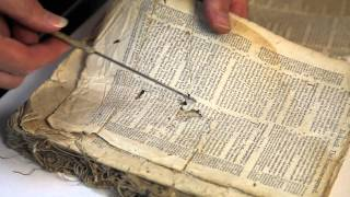 Te Waimate Mission book conservation