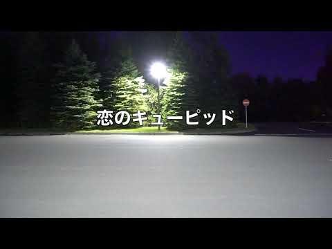 恋のキューピッド/zo-sun park