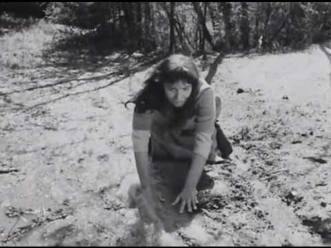 映画『処女の泉』ベルイマンの語る神とクロサワ/ネタバレ・ラスト・結末感想: レビュー・アン・ローズ