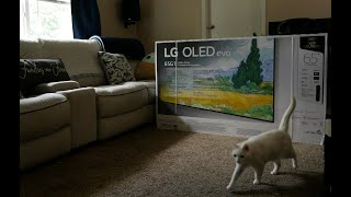 LG G1 Evo OLED Initial Setup, …