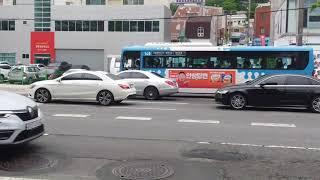 금정구 장전동 롯데마트 사라진 후 부산버스들(5)