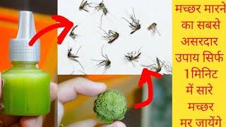 ये उपाय एक बार करके देखें जिंदगी भर मच्छर आपके पास भी नहीं आयेंगे।Homemade Mosquito Repellent