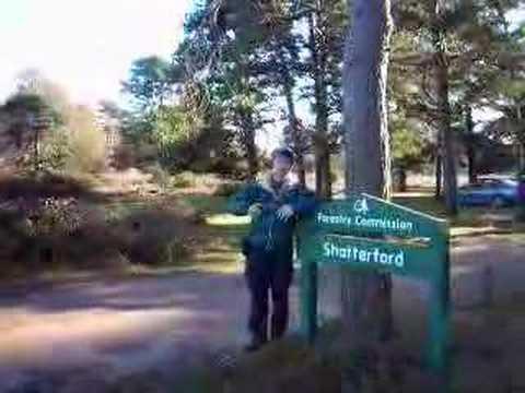 A New Forest Walk - Ashurst to Brockenhurst