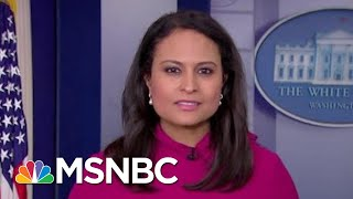President Donald Trump Vetoes Effort To Stop His National Emergency | MSNBC