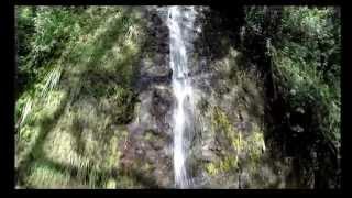 Private Waterfall Hike tour Manoa Oahu Hawaii