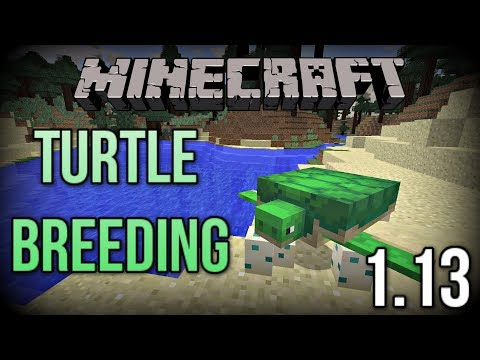 The NEW Way to BREED and HATCH Turtles in Minecraft 1.13! (Update Aquatic)