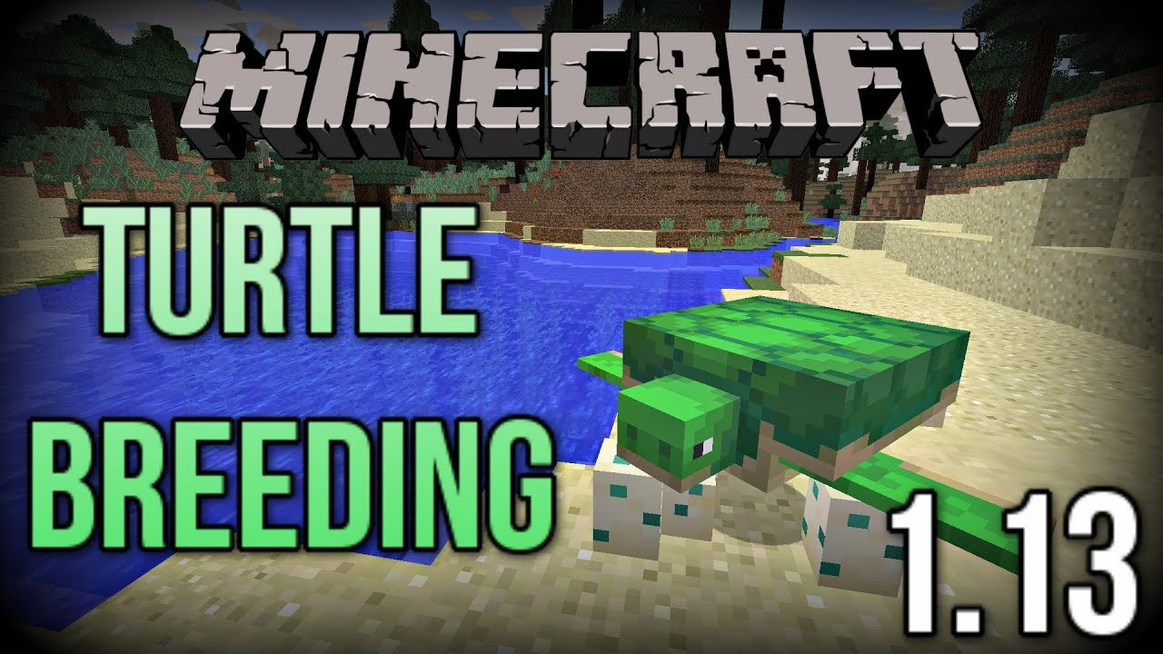 The New Way To Breed And Hatch Turtles In Minecraft 1 13 Update