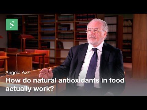 Mechanisms of Antioxidant
