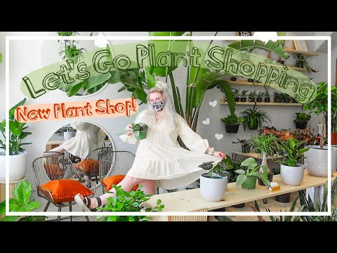 OMG! Houseplant Shop Tour & HAUL!! Lets Go Plant Shopping!!