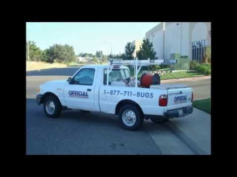 Animal Removal Fresno CA 93722 Wild Animal Trapping