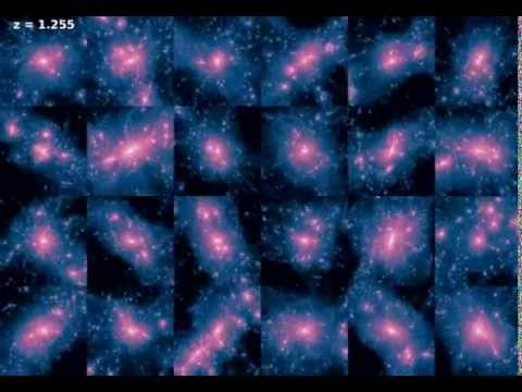 The Formation and Evolution Of 24 Milky Way-sized Galaxies