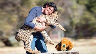 My Pet Cheetah Helped Me Through Cancer
