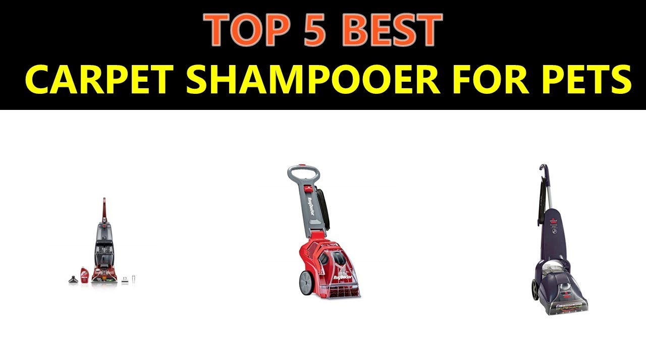 Best Carpet Shampooer for Pets 2018