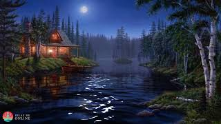 Night Ambient Sounds, Cricket, Swamp Sounds at Night, Sleep and Relaxation Meditation Sounds