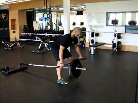 08 Horizontal Pull T B...T Bar Rows