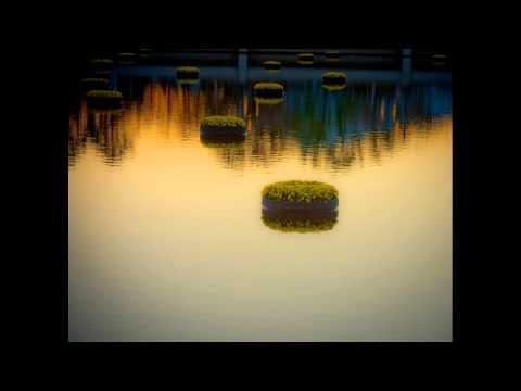 Paul Horn - The Mahabhutas mp3