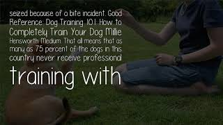Do People Train Their Dogs Or Do Dogs Train Their People?