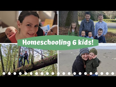 5 Questions for Homeschoolers - Collaboration!