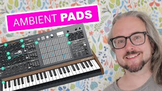 BLACK HOLE DSP 2 – Let's make ambient pads & atmospheric FX with MATRIXBRUTE