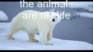 افضل فيلم حيوانات