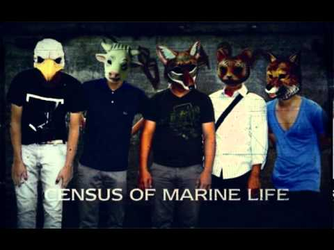 Census Of Marine Life - Two years distances, Dissapear