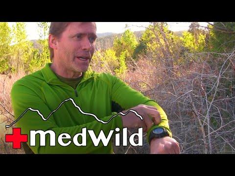 Wilderness Medicine: Snake Bite Treatment