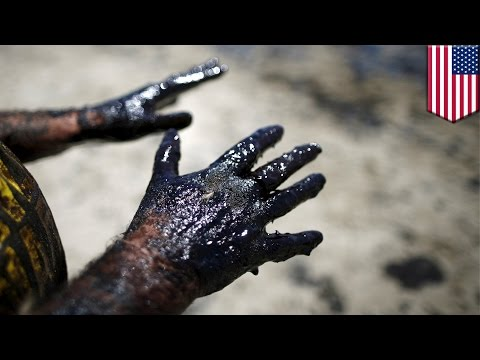 California oil spill: Slick off Refugio State beach expands to 9 miles - TomoNews