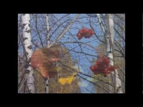 Листья с тополей - Игорь Огурцов