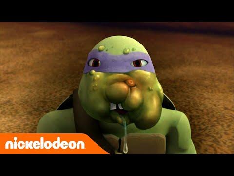 Tartarugas Ninja | Ataque dos Insetos | Nickelodeon em Português