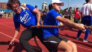 2017年國立體育大學校慶-拔河比賽-教練所001