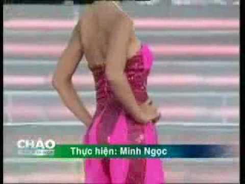 Trang phục trong cuộc thi Hoa hậu Thế giới người Việt 2010