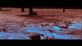 19/27 - E Nomine - Die Prophezeiung - Anderwelt (Laterna Magica)