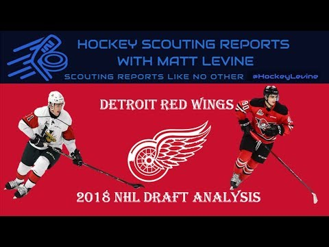 Best Draft of 2018? | Detroit Red Wings 2018 NHL Draft Analysis