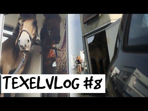 TEXELVLOG #8 Op naar huis, Pony's gaan elkaar missen![ Madee Fleur ]