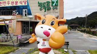 #홍천 맛집!! 늘푸름 홍천 한우 프라자!! 그것이 알…
