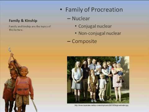 Family & Kinship Part I