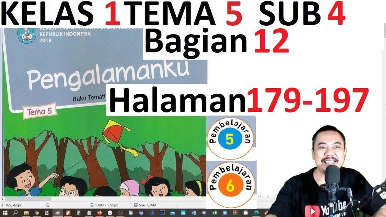 Jawaban Buku Tema 2 Kelas 1 Halaman 181 Guru Sd Smp Sma Cute766