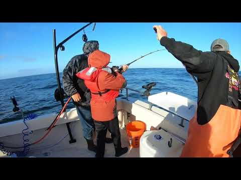 Home - Santa Cruz Coastal Charters, LLC